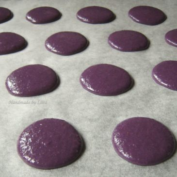 Violetit laskeutuneet