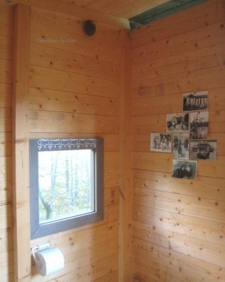 Ampiaispesä ja ikkuna