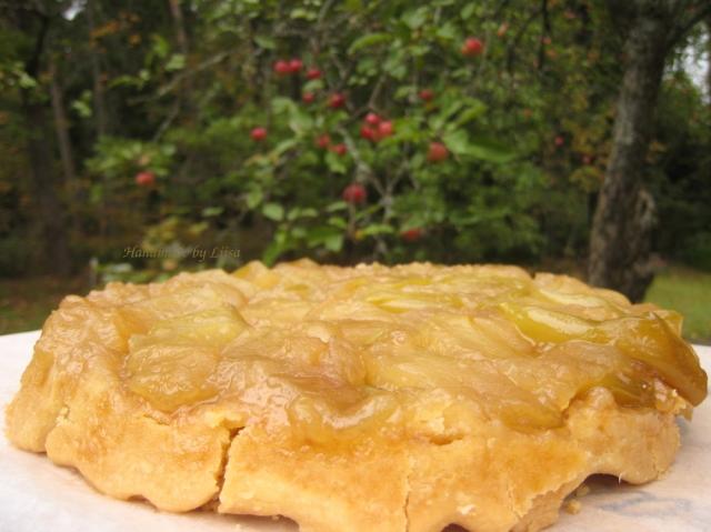 omenapuu-ja-tatin