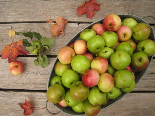 omenat-terassilla