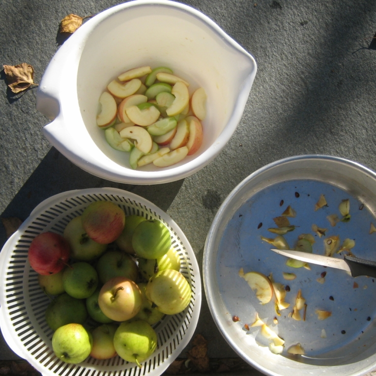 omenoiden-pilkkomista